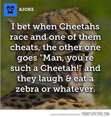 1cheetahs