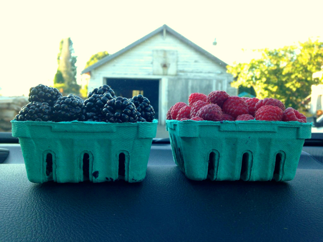 1berrybaskets